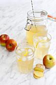 Switchel - Abnehmdrink mit Ingwer, Apfelessig, Sirup und Zitrone
