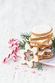 Stacked gingerbread cookies with icing