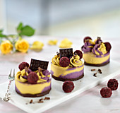 Raw cassis and mango tarts with chocolate and almond bases, decorated with fruity chocolate balls and chocolate squares (vegan)
