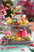 Tischdeko mit Herbst-Früchten in selbstgebauter Etagere