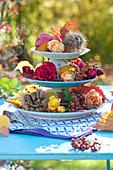 Selbstgebaute Etagere aus Tellern und Tassen mit Rosen und Maronen