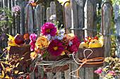 Herbst-Blüten als Willkommen am Gartenzaun