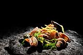 Venusmuscheln und Meeresschnecken mit Algen und Zitronenzesten