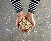 Hands holding rolled oats