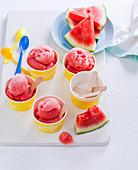 Gin-Wassermelonen-Sorbet