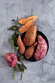 Verschiedene Süßkartoffeln