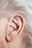 Elderly woman's hearing, conceptual image
