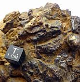 Barringer Crater rock specimen