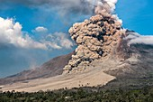 Pyroclastic flow, Mount Sinabung, January 2014