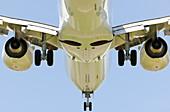 Boeing 737-800 from below