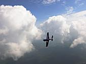 Extra 330LT light aircraft