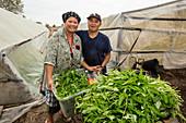 Effects of Hurricane Harvey on Cambodian community, USA