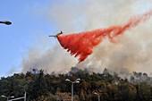 Haifa wildfire 2016