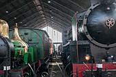 Steam locomotives in a railway museum