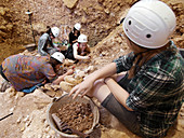 Excavations at Sima del Elefante fossil site, Spain