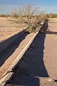 Abandoned irrigation ditch, Arizona, USA