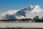 Bioethanol plant, Illinois, USA