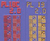Computer chip, SEM