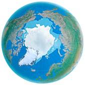 Polar ice cap shrinking, illustration