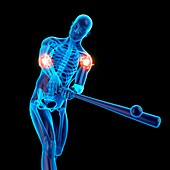 Person using baseball bat, joints, illustration