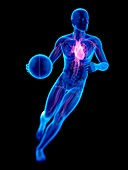 Person playing basketball, heart, illustration