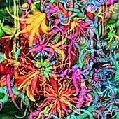 Qualia, abstract image