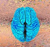 Human brain abstract, 3D MRI scan