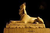 Egyptian Sphinx at night, Russia