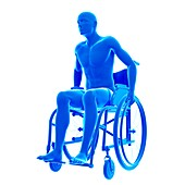 Person in wheelchair, illustration