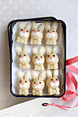 White marzipan Easter Bunnies in a gift box