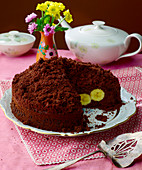 Chocolate mole hill cake