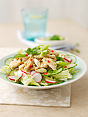 Bang Bang chicken salad with radishes and cucumber (Asia)