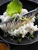 A steamed sardine on rice with a shiso leaf