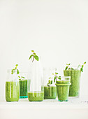 Matcha green vegan smoothie with chia seeds and mint in glasses and bottles over white background