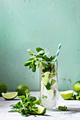 Glass of classic mojito cocktail with fresh mint, limes, crushed ice, retro cocktail tubes with ingredients above