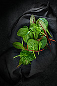 Young salad on a black cloth