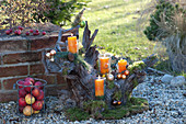 Knorrige Wurzel als Adventskranz dekoriert auf Kies-Terrasse