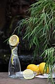 Wasser mit Zitronenscheiben in Karaffe und Schälchen