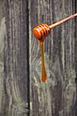 Flüssiger Honig läuft von Honigheber