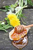 Flüssiger Honig auf Honigwabe und Honigheber