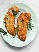 Chicken fillets breaded with panko