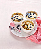 Blueberry Pudding in a Cup