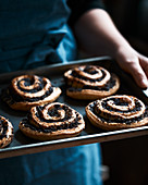 Cinnamon rolls with poppy flower seed on a baking plate
