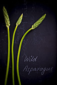 Wild Asparagus on a black slate