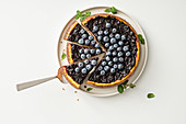 Ricotta and blueberry tart