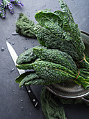 Black (Tuscan) kale in a colander over black background
