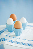 Four eggs in eggcups