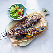 Grilled trout and mackerel
