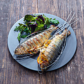 Grilled trout in grill plates