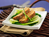 Salmon slices on pak choy (Asia)